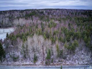 Lot for sale in Disraeli - Paroisse, Chaudière-Appalaches, Route du 3e-Rang, 26297873 - Centris.ca