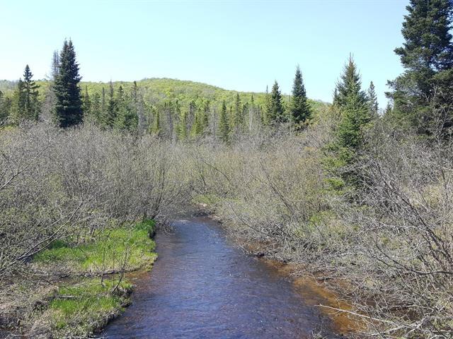 Terrain à vendre à Lac-Supérieur, Laurentides, Chemin du Lac-Supérieur, 16812430 - Centris.ca