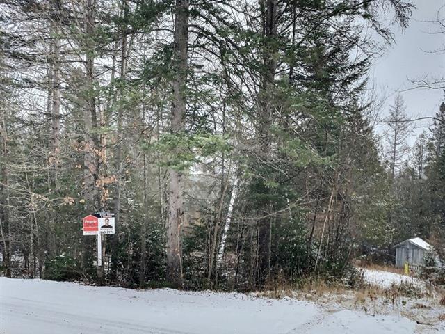 Terrain à vendre à Chertsey, Lanaudière, Chemin de la Grande-Vallée, 28122957 - Centris.ca