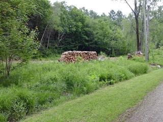 Terrain à vendre à Notre-Dame-du-Mont-Carmel, Mauricie, 4350, Rue des Cormorans, 10471007 - Centris.ca