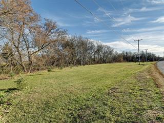 Terrain à vendre à Lanoraie, Lanaudière, Rang du Petit-Bois-d'Autray, 22279142 - Centris.ca