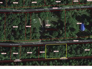 Terrain à vendre à Hinchinbrooke, Montérégie, Rue  Strawberry, 17115284 - Centris.ca