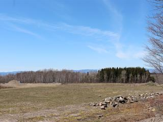 Lot for sale in L'Islet, Chaudière-Appalaches, boulevard  Nilus-Leclerc, 24463432 - Centris.ca