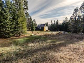 House for sale in Val-David, Laurentides, 2268, Montée  Predeal-Trudeau, 12696691 - Centris.ca