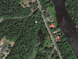 Terrain à vendre à Chertsey, Lanaudière, Avenue des Bleuets, 26976886 - Centris.ca