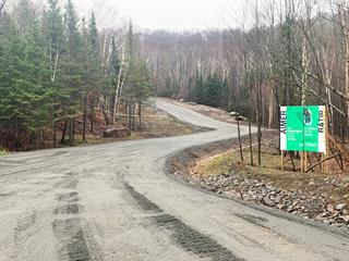 Terrain à vendre à Sainte-Adèle, Laurentides, Chemin du Mont-Loup-Garou, 13287600 - Centris.ca