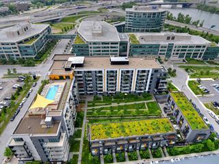 Condo / Apartment for rent in Montréal (Verdun/Île-des-Soeurs), Montréal (Island), 111, Chemin de la Pointe-Nord, apt. 502, 15209960 - Centris.ca