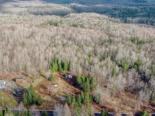 Lot for sale in Mont-Laurier, Laurentides, 3980, Chemin de Val-Limoges, 27697450 - Centris.ca