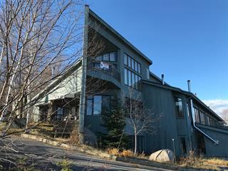 Maison à vendre à Baie-Saint-Paul, Capitale-Nationale, 267Z, Rang  Saint-Antoine Nord, 26586436 - Centris.ca