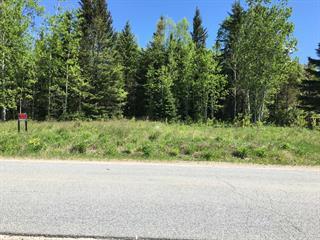 Terrain à vendre à Larouche, Saguenay/Lac-Saint-Jean, 528, Rue des Épinettes, 14226197 - Centris.ca