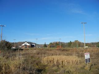 Terrain à vendre à Low, Outaouais, Chemin  Stewart, 10677993 - Centris.ca