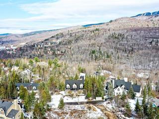 Maison à vendre à Mont-Tremblant, Laurentides, 237, Chemin des Cerfs, 14649358 - Centris.ca