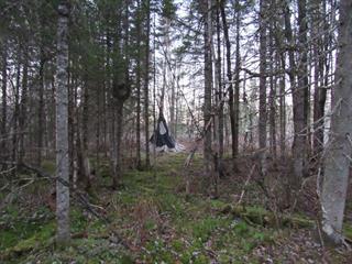 Terrain à vendre à Dudswell, Estrie, Chemin  Gravel, 25121969 - Centris.ca