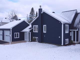 House for sale in Sainte-Catherine-de-la-Jacques-Cartier, Capitale-Nationale, 28, Rue de la Seigneurie, 24521238 - Centris.ca