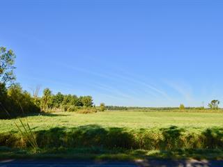 Terrain à vendre à Hemmingford - Canton, Montérégie, Rue  Industrielle-Petch, 27955776 - Centris.ca