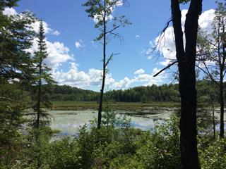 Lot for sale in Sainte-Adèle, Laurentides, Chemin du Lac-Pilon, 27746426 - Centris.ca