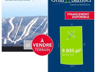 Lot for sale in Saint-Ferréol-les-Neiges, Capitale-Nationale, Rue de Coubertin, 21434141 - Centris.ca