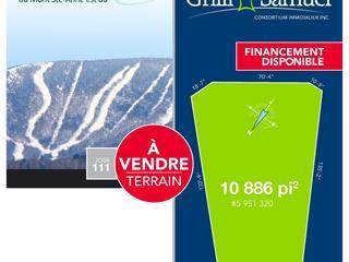 Lot for sale in Saint-Ferréol-les-Neiges, Capitale-Nationale, Rue de Coubertin, 21335440 - Centris.ca