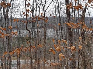 Terrain à vendre à La Minerve, Laurentides, Chemin des Pionniers, 19921458 - Centris.ca
