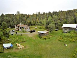 Maison à vendre à Lac-Supérieur, Laurentides, 902, Chemin du Lac-Quenouille, 17907230 - Centris.ca