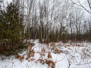 Terrain à vendre à Nouvelle, Gaspésie/Îles-de-la-Madeleine, Route de Miguasha Ouest, 16289773 - Centris.ca