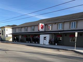 Bâtisse commerciale à vendre à Saint-Jean-Port-Joli, Chaudière-Appalaches, 27, Avenue  De Gaspé Ouest, 12110608 - Centris.ca