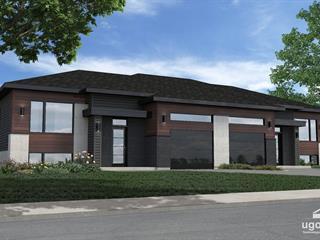 Maison à vendre à Saint-Louis-de-Gonzague (Montérégie), Montérégie, 17, Rue  Charles-Larocque, 10079803 - Centris.ca