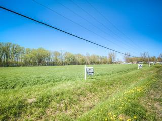 Terrain à vendre à Noyan, Montérégie, Chemin de la Petite-France, 19366391 - Centris.ca