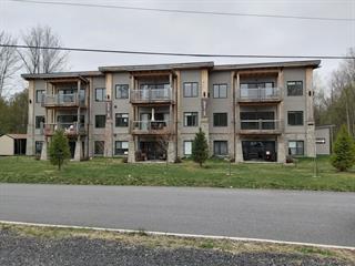 Condo / Appartement à louer à Bromont, Montérégie, 105, Rue  Natura, app. 103, 22530143 - Centris.ca