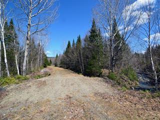 Land for sale in Sainte-Cécile-de-Whitton, Estrie, Chemin des Bois, 18986564 - Centris.ca