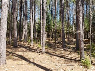 Terrain à vendre à Bowman, Outaouais, Chemin du Chevreuil-Blanc, 25580526 - Centris.ca