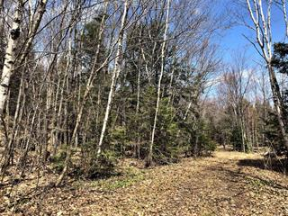 Lot for sale in Saint-Colomban, Laurentides, Rue  Pomerleau, 21941459 - Centris.ca