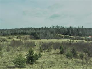 Land for sale in Sainte-Anne-du-Lac, Laurentides, Rue  Lachapelle, 19109926 - Centris.ca