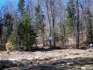 Lot for sale in Chertsey, Lanaudière, Rue  Daphnie, 10318451 - Centris.ca