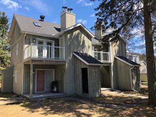Condo for sale in Sainte-Adèle, Laurentides, 248, Chemin du Mont-Loup-Garou, apt. 223, 20778280 - Centris.ca