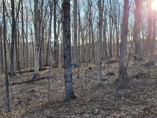 Lot for sale in Val-des-Lacs, Laurentides, Chemin  Éric, 17195199 - Centris.ca