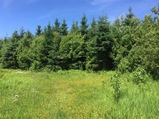 Land for sale in Manseau, Centre-du-Québec, Chemin du Petit-Montréal, 11238525 - Centris.ca