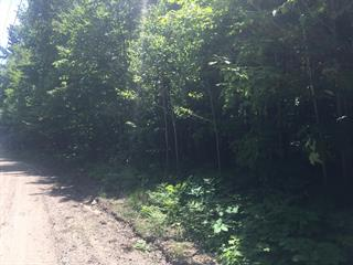 Land for sale in Saint-Aimé-du-Lac-des-Îles, Laurentides, Chemin de la Vallée-à-Josaphat, 14938397 - Centris.ca