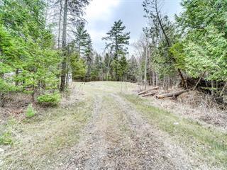 Terrain à vendre à Val-des-Monts, Outaouais, 152, Chemin  Sauvé, 10296394 - Centris.ca