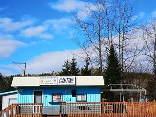 Bâtisse commerciale à vendre à Matane, Bas-Saint-Laurent, 205, Route  195, 27479776 - Centris.ca