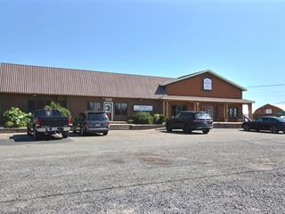 Bâtisse commerciale à louer à Saint-Pascal, Bas-Saint-Laurent, 64, Route  230 Ouest, 17203032 - Centris.ca