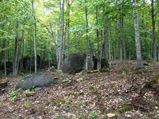 Lot for sale in Morin-Heights, Laurentides, Rue  Brunet, 10447849 - Centris.ca