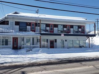 Commercial building for sale in Pohénégamook, Bas-Saint-Laurent, 471, Rue  Principale, 13801900 - Centris.ca