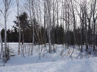 Lot for sale in Rouyn-Noranda, Abitibi-Témiscamingue, boulevard  Témiscamingue, 12568630 - Centris.ca