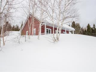 House for sale in Larouche, Saguenay/Lac-Saint-Jean, 446, Chemin  Dubois, 17204510 - Centris.ca
