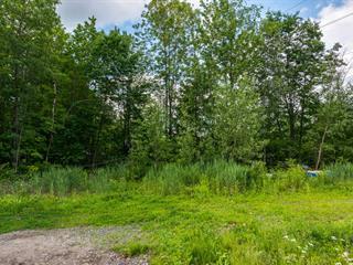 Lot for sale in Saint-Roch-de-l'Achigan, Lanaudière, Rang  Saint-Régis, 27199417 - Centris.ca