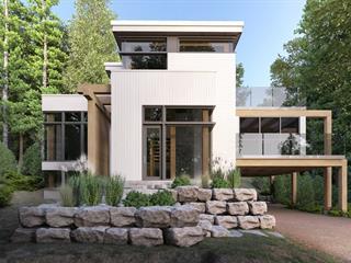 Maison à vendre à Mont-Tremblant, Laurentides, Chemin des Quatre-Sommets, 9336697 - Centris.ca