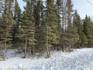 Land for sale in Weedon, Estrie, Chemin  Fontaine, 13755557 - Centris.ca