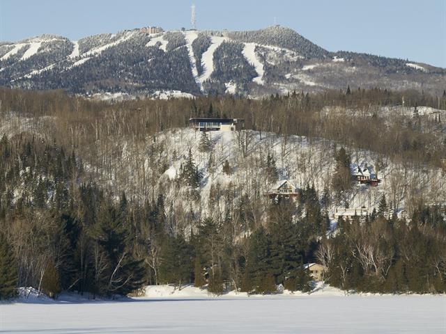 House for sale in Mont-Tremblant, Laurentides, 60, Allée des Perséides, 23474216 - Centris.ca
