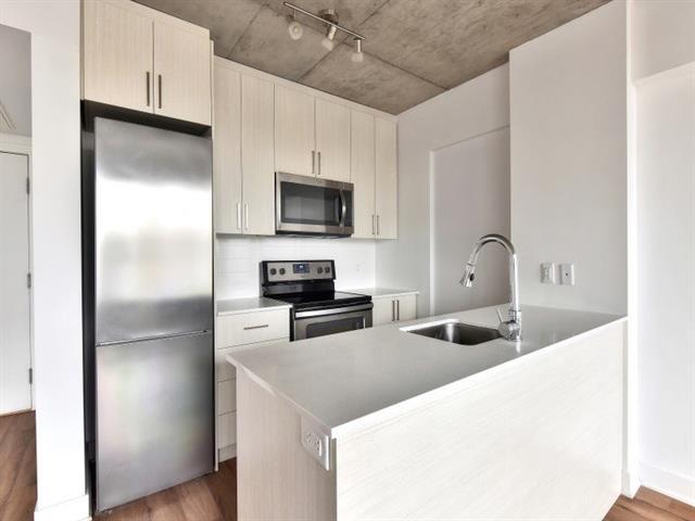 Condo / Apartment for rent in Montréal (Ville-Marie), Montréal (Island), 1325, Rue  Saint-André, apt. 404, 17200093 - Centris.ca